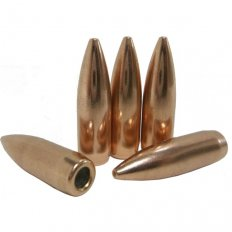 Prvi Partizan Bullets .22 Caliber (.224 Diameter) 62 Gr. FMJ BT- Bag of 100