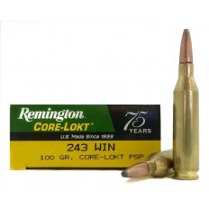 243 Winchester - Rifle Ammunition - Shop by Category