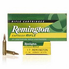 Remington .17 Remington 25 Gr. Hollow Point- Box of 20